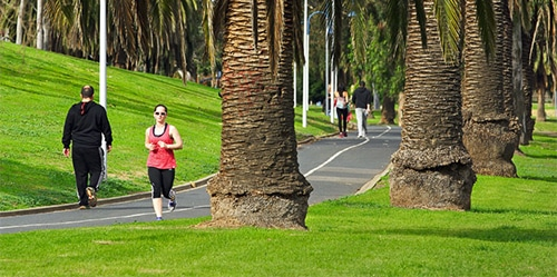 Walk the Maribyrnong River